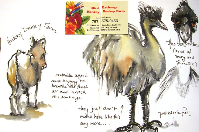 donkeyostrich
